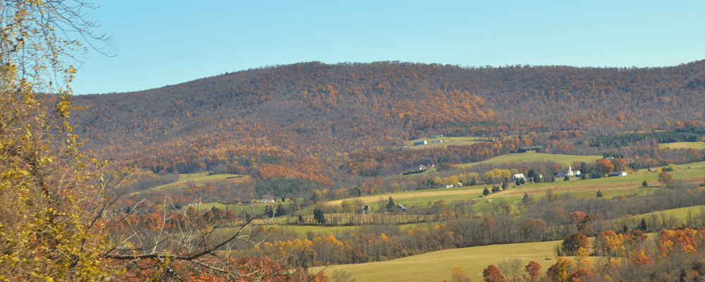 guide to living in murrysville pennsylvania
