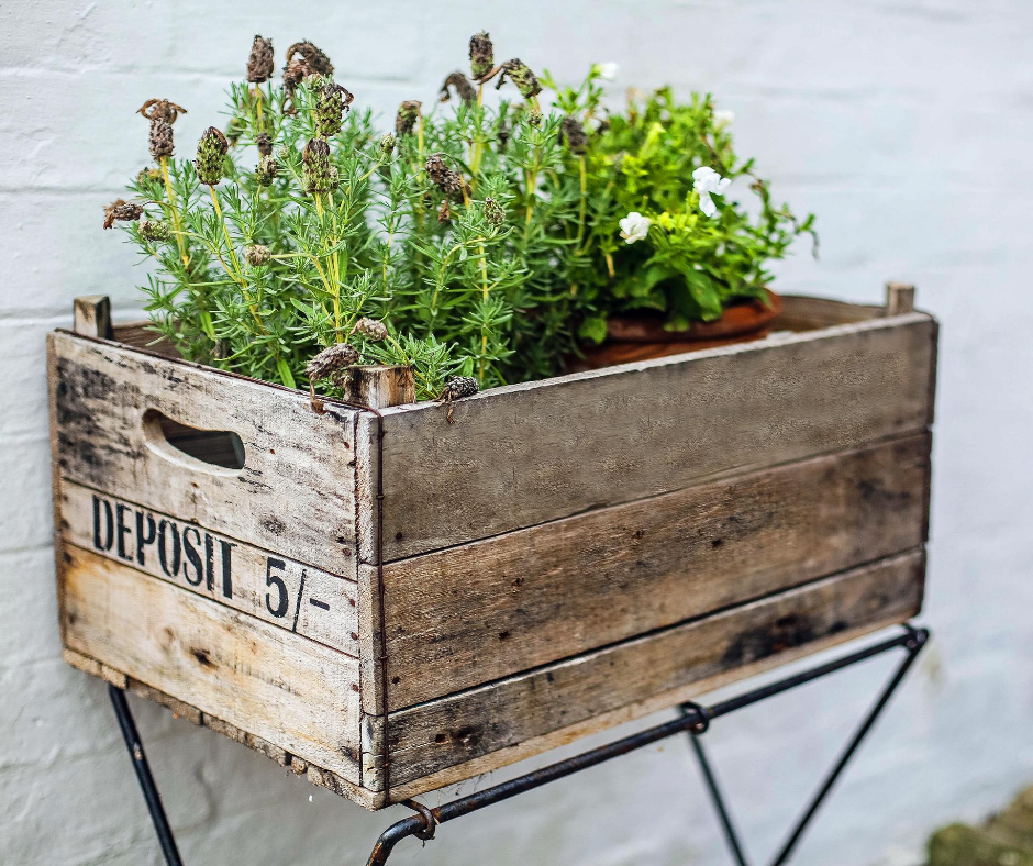 Use a crate for multiple plants or plants with deep roots