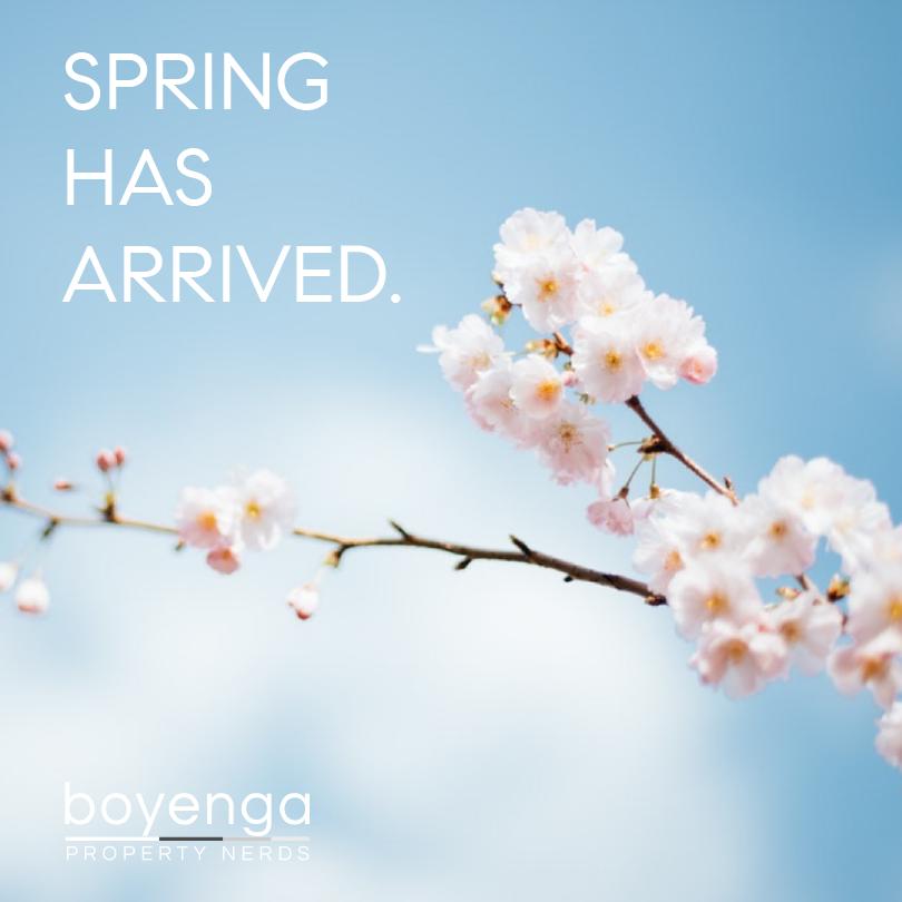 Spring Break 2019 Guide